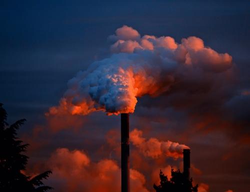 Sanctions en droit de l'environnement : Rappels et dernières tendances (2/3)