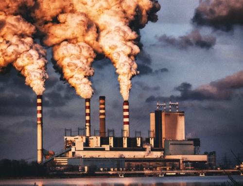 Sanctions en droit de l'environnement : Rappels et dernières tendances (3/3)
